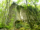 bosco incantato_9